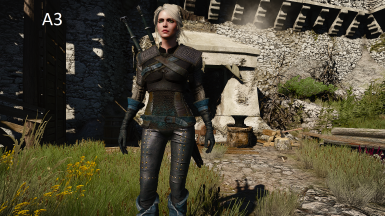 New clothes for Ciri at The Witcher 3 Nexus - Mods and community