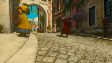 The Big Red Cape for AMM at The Witcher 3 Nexus - Mods and