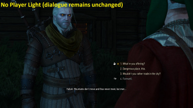 No Player Light during dialogues