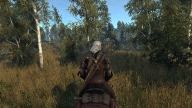 The Witcher 3 Screenshot 2017 10 01   23 05 01 01
