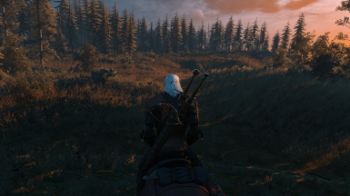 The Witcher 3 Screenshot 2017 10 01   22 40 49 31