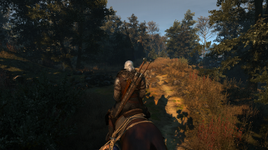 The Witcher 3 Screenshot 2017 10 21   23 29 24 89
