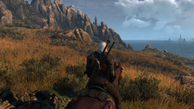 The Witcher 3 Screenshot 2017 10 01   22 41 46 75