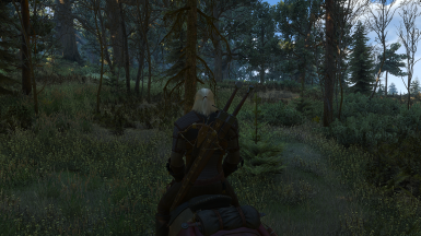 The Witcher 3 Screenshot 2017 10 01   22 50 07 25