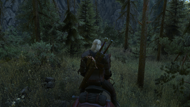 The Witcher 3 Screenshot 2017 10 01   22 56 46 39