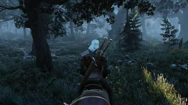 The Witcher 3 Screenshot 2017 10 05   19 56 25 46