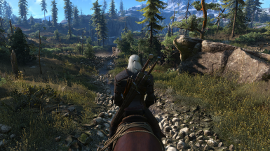 The Witcher 3 Screenshot 2017 10 05   20 04 42 75