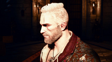 Stylish Hairstyles For Geralt At The Witcher 3 Nexus Mods