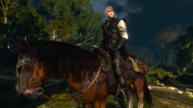 Sezon Burz Witcher's Gear
