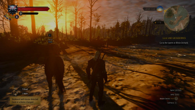 play witcher3 on extra low systems and play on ultra high systems