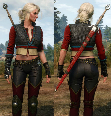 Fix Alternative Look for Ciri (DLC11)