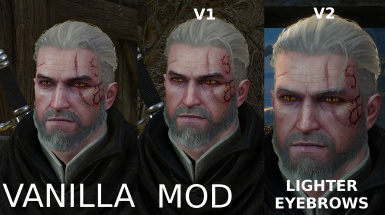 Lighter Scar For Geralt