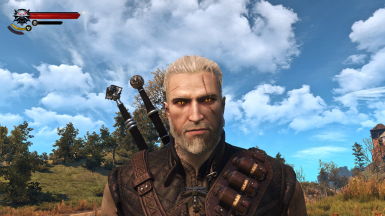 White Eyebrows and Beard Version