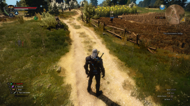 Witcher 2 -ISH- HUD