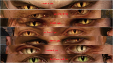 Unique Eyes for ALL Witchers High Quality