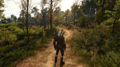 Witcher Sense OFF