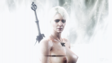 All-in-One Quest Nudity at The Witcher 3 Nexus - Mods and