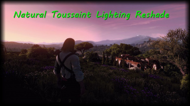 Natural Toussaint Lighting Reshade