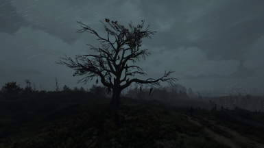Phoenix Lighting Mod At The Witcher 3