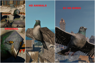 If somebody needs to compare the HD-ness of bird mods