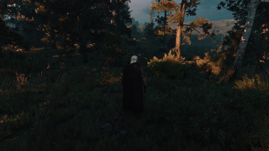 Contract: Monsters in the Woods