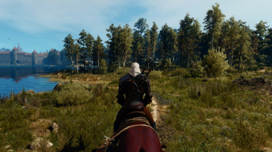 Apex Realistic Reshade at The Witcher 3 Nexus - Mods and