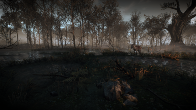 WO Lighting Everywhere Compatile with other Lighting mods