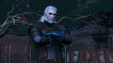 ESR Overhaul at The Witcher 3 Nexus - Mods and community