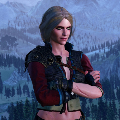 Ciri Alternate Hairstyle (Both Player and Npc)