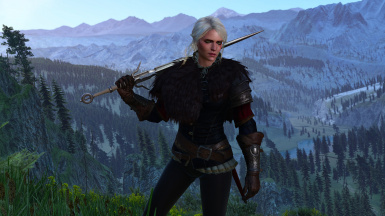 Ciri Warrior Outfit (Both Player and NPC)