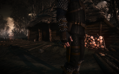 Raven Armor Set at The Witcher 3 Nexus - Mods and community