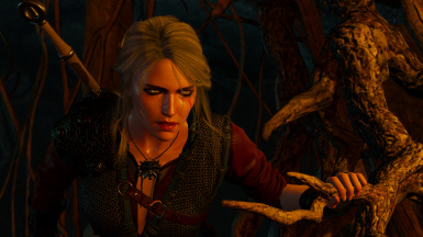 Ciri Ashen Hair