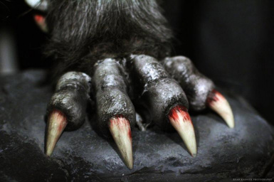 WolvenClaws