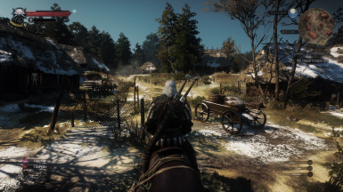 witcher3 HUD Before