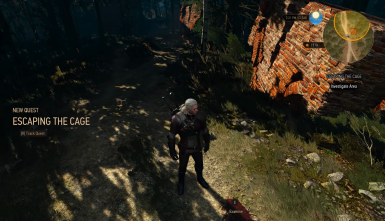 New Quest - Escaping the Cage at The Witcher 3 Nexus - Mods