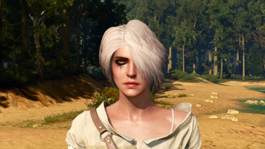 encoded hairworks: some ciri RANDOM hairworks test