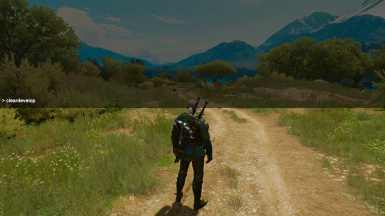 Cleardevelop at The Witcher 3 Nexus - Mods and community