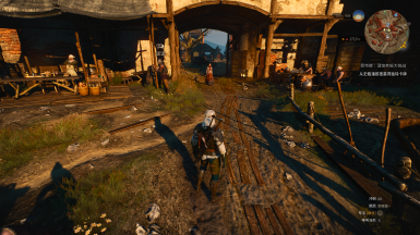 Don't change FOV while in Witcher Senses