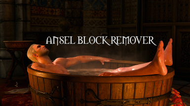 Ansel block remover