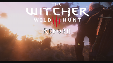 Witcher Reborn Modding Guide