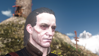 Regis No Sideburns With Eyebrows