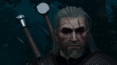 Dynamic Toxic Black Eyes Netflix At The Witcher 3 Nexus