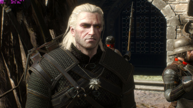 Lore friendly witchers -  geralt weathered face 1