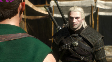 Lore friendly witchers - geralt weathered face 2