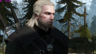 Lore friendly witchers  - geralt weathered face 3