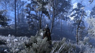 Freezing Winter Skellige