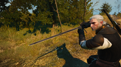 Witcher 2 Dark Swords