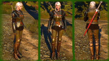 Griffin School Armor for Ciri