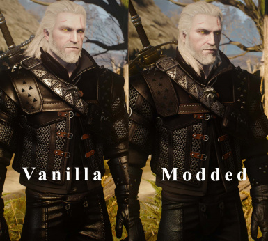 Alternative Hairstyles for All Witcher Armors