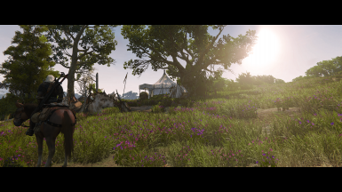 With Reshade 1.0